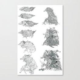 Evolutionary Sequence Canvas Print