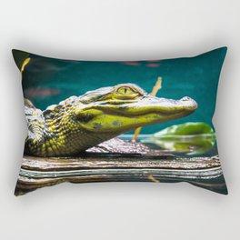 Reflections   Sunshine Coast, Australia Rectangular Pillow