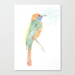 bird XVIII Canvas Print