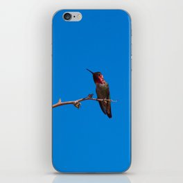 Beautiful Hummer - II iPhone Skin