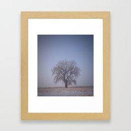 Tree Fog Framed Art Print
