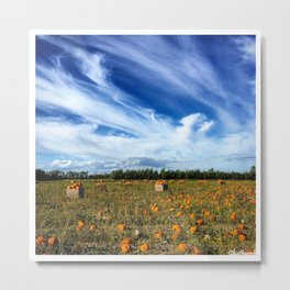 Pumpkin season is here Metal Print