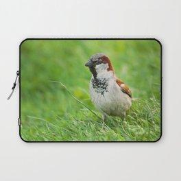 Male House Sparrow Laptop Sleeve