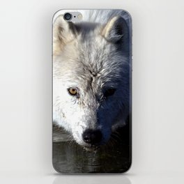 Quenched iPhone Skin
