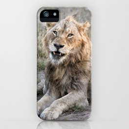 Male African Lion iPhone Case