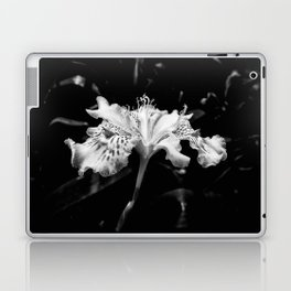 Delicate Laptop & iPad Skin