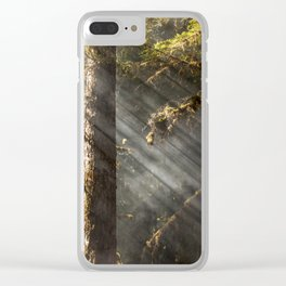 Beautiful Trees / 2 Clear iPhone Case