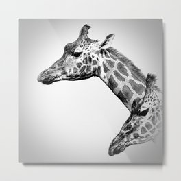 Giraffes Black And White Metal Print