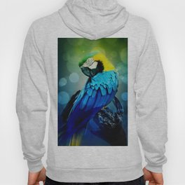 Macaw on branch Hoody