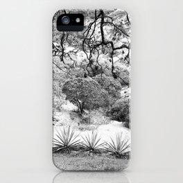 Oaxaca Mountain iPhone Case