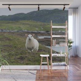 The prettiest sheep Wall Mural