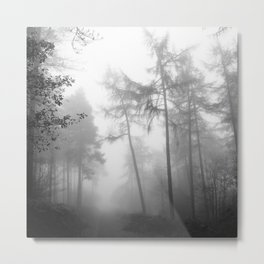 TROUGHT THE FOREST Metal Print