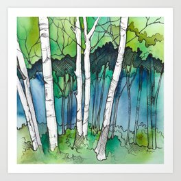 Birch Trees II Art Print