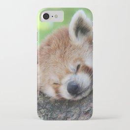 Red_Panda_20150705_by_JAMFoto iPhone Case