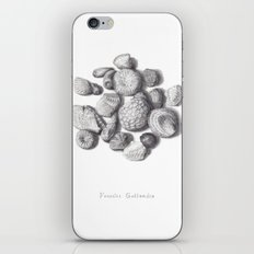 Fossils iPhone & iPod Skin