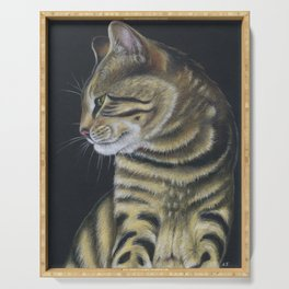 Arnie The Cat Colored Pencil Serving Tray
