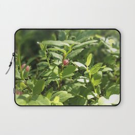 Underbrush wonders in the forest Laptop Sleeve