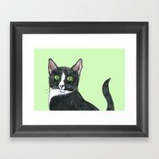 Black and White Cat  Framed Art Print