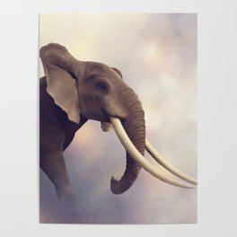 African Elephant Portrait .Digital painting Poster
