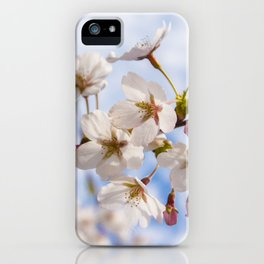 High Park Cherry Blossoms iPhone Case