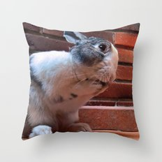 Le Lapin Throw Pillow