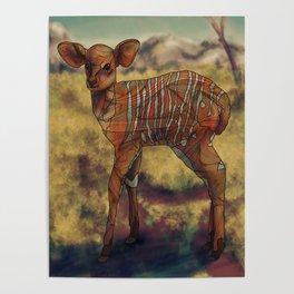 Nyala Poster