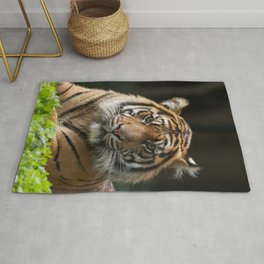 Look into my eyes by Teresa Thompson Rug