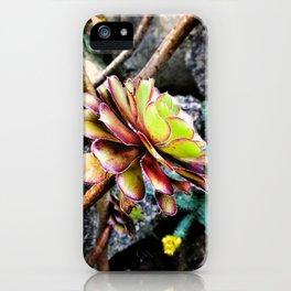 Summer Succluent iPhone Case