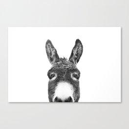 Hey Donkey BW Canvas Print
