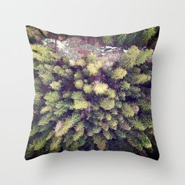 Aerial Wilderness Throw Pillow