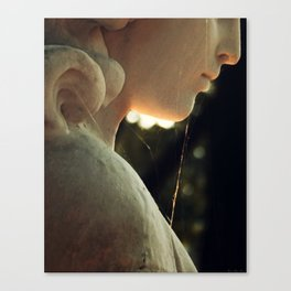 Webbed Angel Canvas Print