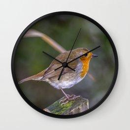Mr. Robin. Wall Clock