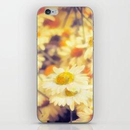 Gathering of Yellow Daisies iPhone Skin