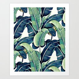 Banana leaves Kunstdrucke