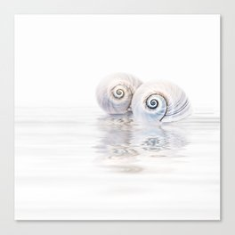 Snail Shells On Water Canvas Print