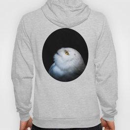 Winter White Snowy Owl Hoody
