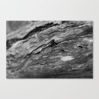 wooden Canvas Prints featuring Wooden by North to South