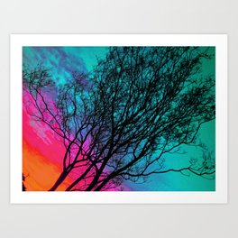 Behind The ol' Crape Myrtle Art Print