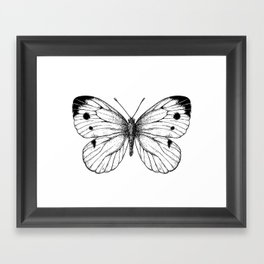 Cabbage butterfly Framed Art Print