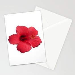 Stunning Red Hibiscus Flower Stationery Cards