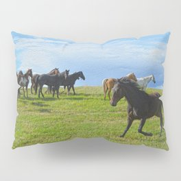 The Round Up Pillow Sham