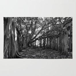Everglades. Rug
