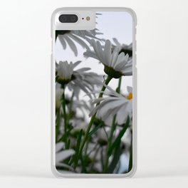 Giant Daisies Clear iPhone Case