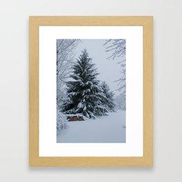 New England Winter Framed Art Print