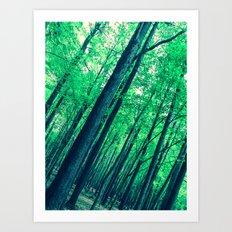 Spring Vertigo Art Print