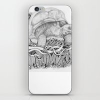 tortoise iPhone & iPod Skins featuring Tortoise by Squidoodle