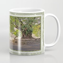 Tropical Hardwood Trees in Pokhara, Phewa Lake, Nepal Coffee Mug