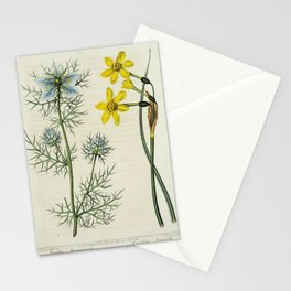 Flower Love in a mist Devil in a bush Jonquill nigella damascena narcissus jonquilla62 Stationery Cards