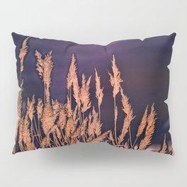 Abstract beach grass Pillow Sham