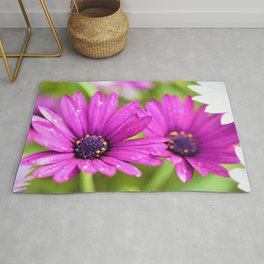 Morning Dew on Purple Daisies by Reay of Light Photography Rug